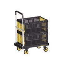 Caja plegable 25 kg SXWTD-FT505
